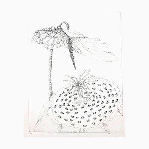 Lithographie Gochka Charewicz - Herbarium - Lithographie Signée Originale
