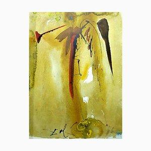 Salvador Dali - Biblia Sacra - Lithographie 1969