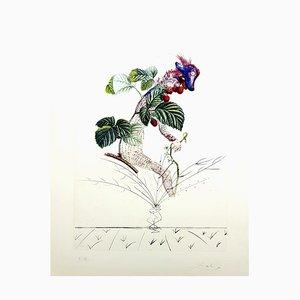 Lithographie Salvador Dali - Raspberry - Lithographie Signée à l'Original 1969