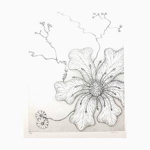 Gochka Charewicz - Herbarium - Original Signed Lithograph