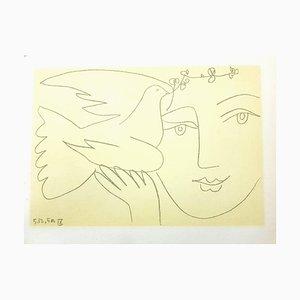 (après) Pablo Picasso - Face of Peace - Lithographie 1951