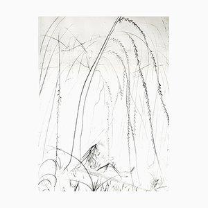 Salvador Dali - Trauerweide - Original Radierung auf Seide 1968