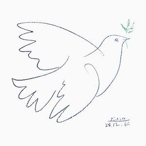 Nach Pablo Picasso - Friedenstaube - 1961 Lithographie