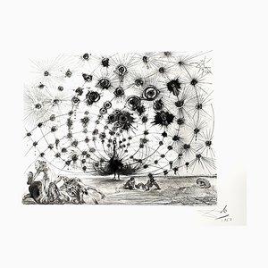 Salvador Dali - Argus - Original Radierung 1962