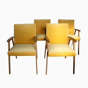 Mid-Century Esszimmerstühle mit Goldenem Samtbezug, 4er Set