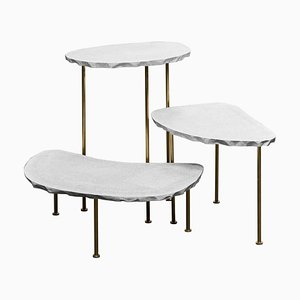 Modern Fossils, Brass and Resin Tables Ensemble