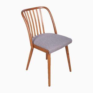 Esszimmerstühle von Antonín Šuman für Ton, 1960er, Set of 4