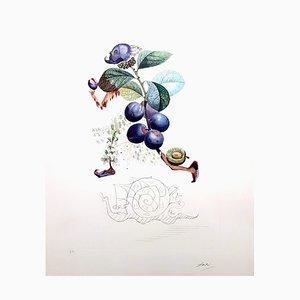 Plum Hand-Signed Lithografie von Salvador Dali, 1969