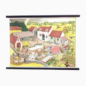 Affiche Scolaire Farmscene Mid-Century par Elizabeth Skilton pour General Service English Wall Pictures
