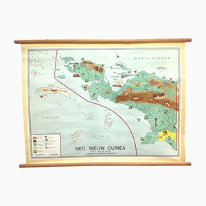 Affiche Murale d'Ecole Map Nouvelle-Guinée Néerlandaise par W Bakker & H Rusch pour Dijkstra's Uitgeverij, 1950s
