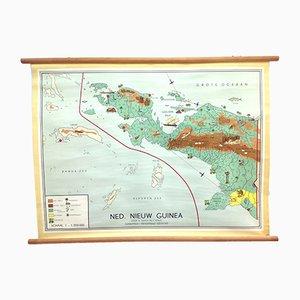 Póster escolar sobre el mapa holandés de Nueva Guinea de W Bakker & H Rusch para Dijkstra's Uitgeverij, años 50
