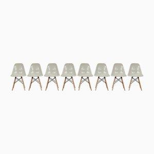Vintage DSW Stühle von Charles & Ray Eames für Herman Miller, 1982, 8er Set