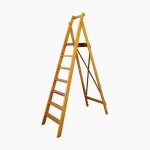 Folding Library Steps or Workshop Ladder Beech, 1950s