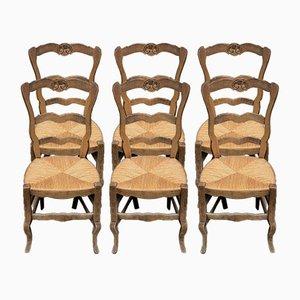 Antike Französische Esszimmerstühle mit Sprossenlehnen, 6er Set