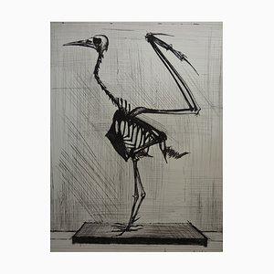 Bird Skeleton Engraving by Bernard Buffet