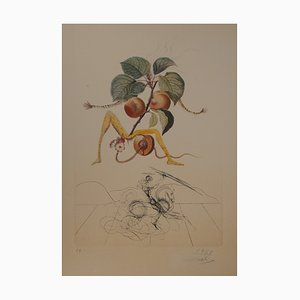 Vintage Flordali Apricot Knight Lithograph & Etching by Salvador Dali