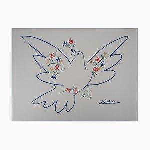 Lithographie Colombe et Branche de Fleurs Vintage d'après Pablo Picasso