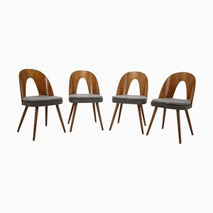 Dining Chairs by Antonín Šuman, Czechoslovakia, 1960s, Set of 4