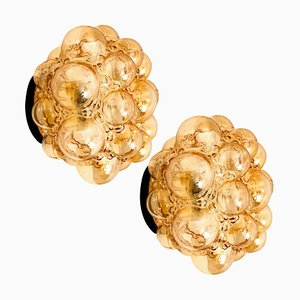 Amber Bubble Flush Mounts or Wall Sconces by Helena Tynell, 1960s, Set of 2