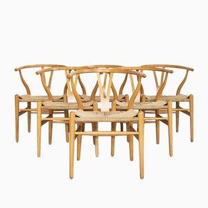 Wishbone Stühle aus Buche von Hans Wegner für Carl Hansen & Søn, 1980er, 6er Set