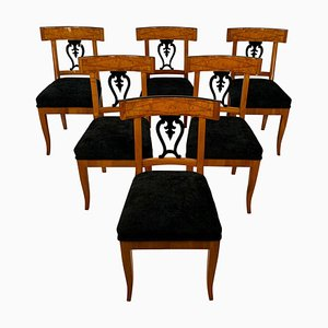 Biedermeier Chairs in Cherry Veneer and Ash Roots, Germany, 1820s, Set of 6