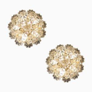 Mid-Century Blumen Wandleuchten aus Messing & Glas von Palwa, 1960er, 2er Set