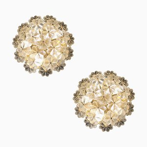 Mid-Century Brass and Glass Flower Sconces from Palwa, 1960s, Set of 2
