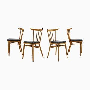 Chaises de Salon en Hêtre de Tatra, Tchécoslovaquie, 1960s, Set de 4