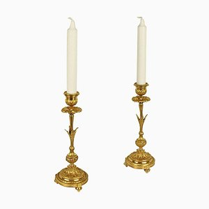 19th Century Ormolu Candlesticks in the Shape of a Paris Daisy, Set of 2
