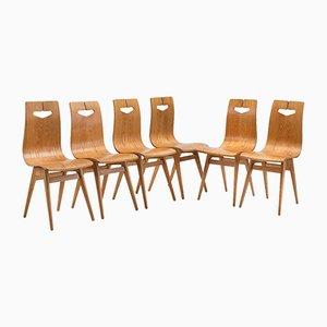 Typ 1329 Stühle von RT Halas, 1960er, 6er Set