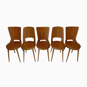 Dove and Mondor Side Chairs from Baumann, 1970s, Set of 5