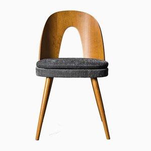 Vintage Walnut and Gray Fabric Dining Chairs by Antonín Šuman for MIER Topolčany, 1960s, Set of 13