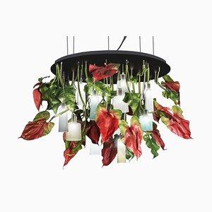 Großer runder Flower Power Anthurium Kronleuchter mit Lampen aus Mun Glas von Vgnewtrend