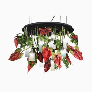Large Flower Power Round Anthurium Chandelier with Mun Glass Lamps from Vgnewtrend