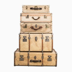 Vellum Suitcase Collection, Set of 5