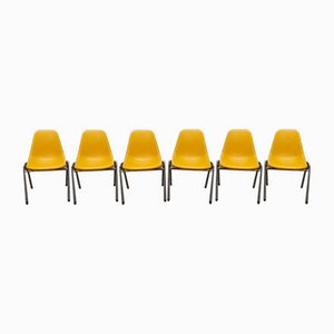 Vintage Orly Chairs by Bruno Pollak, 1970s, Set of 6