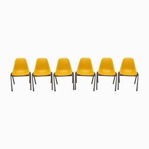 Vintage Orly Stühle von Bruno Pollak, 1970er, 6er Set