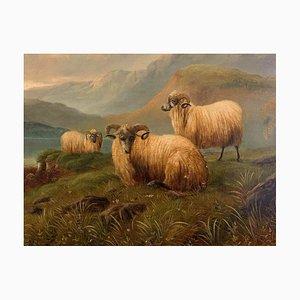 Rebaño de pintura de Vermont de William Morris Hunt, 1850