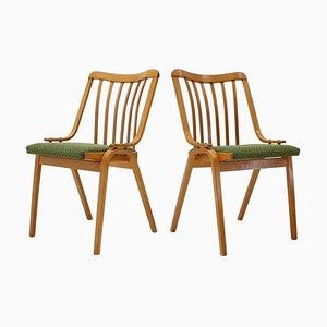 Chaises de Salon par Antonín Šuman, 1960s, Set de 2