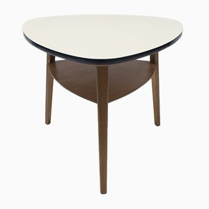Mid-Century German Coffee Table with Storage, 1950s