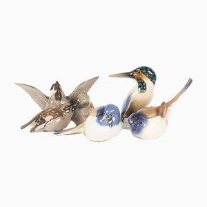 Dänische Vintage Vogelfiguren aus Porzellan von Dahl Jensen für Bing & Grondahl, 1960er, 4er Set
