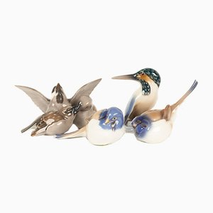 Vintage Danish Porcelain Bird Figurines by Dahl Jensen for Bing & Grondahl, 1960s, Set of 4