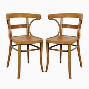 Dining Chairs from Fischel, 1920s, Set of 2