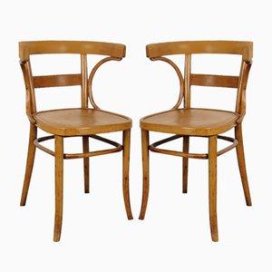 Esszimmerstühle von Fischel, 1920er, 2er Set