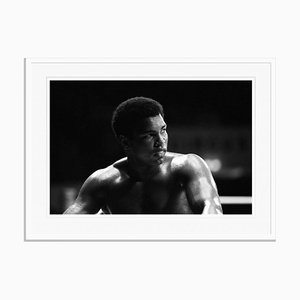 Muhammad Ali Ringside Framed in White Archival Pigment Print by Mirror Group Archives