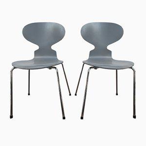 Sedie Ant di Arne Jacobsen per Fritz Hansen, inizio XXI secolo, set di 2