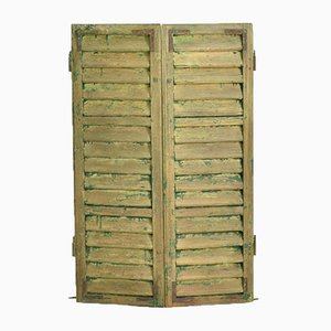 Vintage Hungarian Green Shutters, 1950s, Set of 2