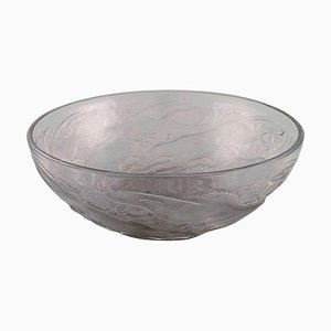 Art Deco Chiens Bowl in Art Glass by René Lalique, 1930s