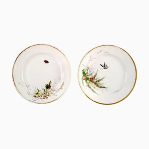Antique Hand-Painted Butterfly & Insect Plates from Bing & Grøndahl, Set of 2