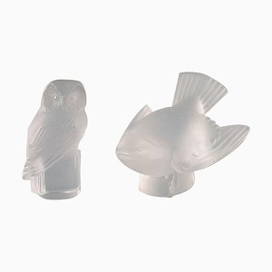 Owl and Bird in Clear Art Glass by R. Lalique, 1960s, Set of 2